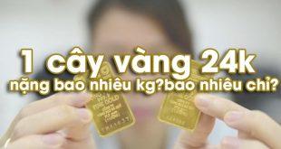 vang_SJC_13