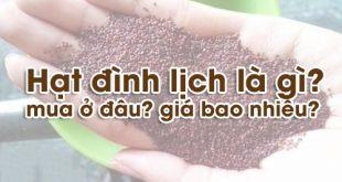 h_e1_ba_a1t-_c4_91_c3_acnh-l_e1_bb_8bch-4_grande